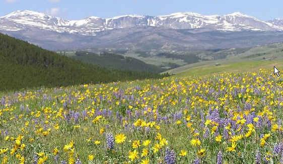 Bighorn Mountains - srdce vraní země