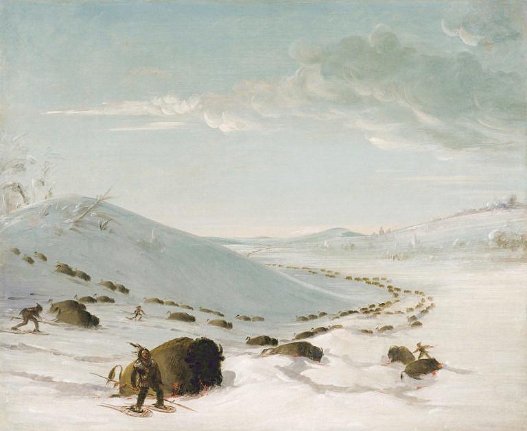 Lov bizonů v zimě na obraze George Catlina.