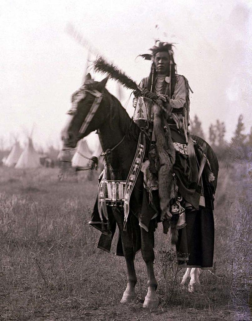 Bojovník kmene Vran a jeho kůň v plné parádě.