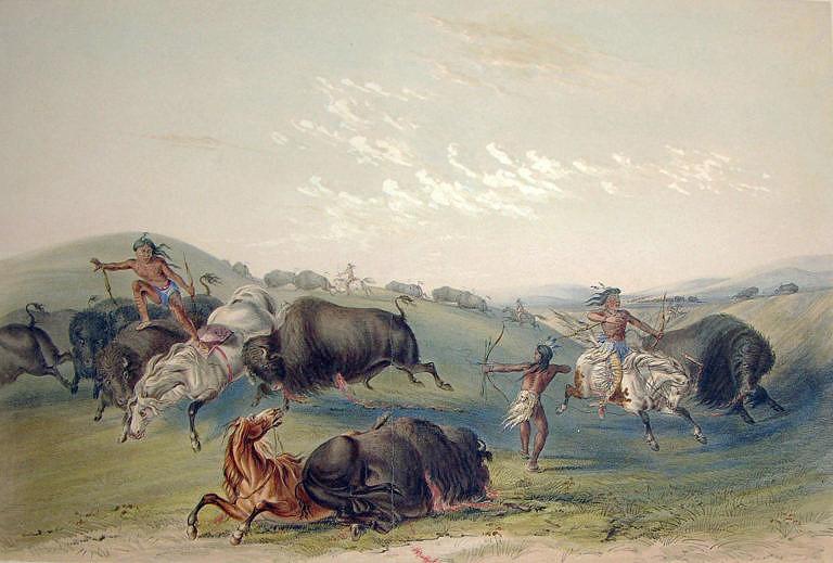 Lov bizonů na obraze George Catlina. Koně i lovci byli vystaveni extrémnímu nebezpečí smrti nebo zranění.