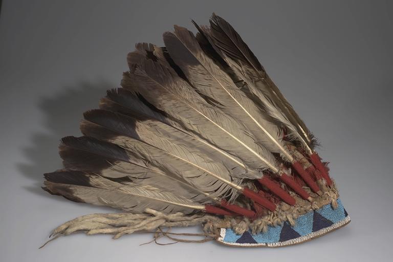 Čeleneka klasického typu. AMNH.