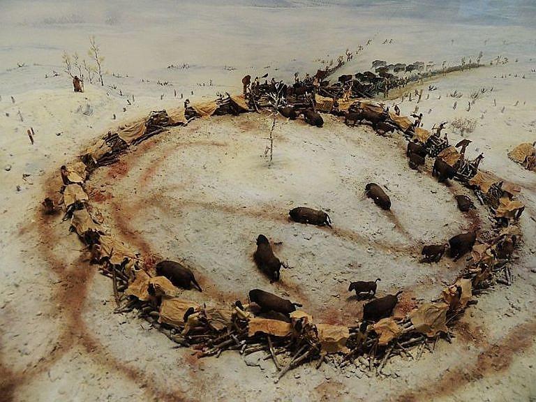 Dioráma ohrady pro lov bizoní. Royal museum Alberta v Kanadě.