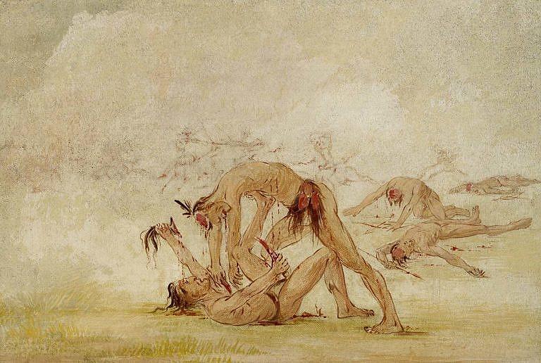 Válečnická mentalita indiánů měla také vliv na vyhubení bizonů. Každý kmen se snažil získat pušky, aby si zajistil výhodu nad nepřátelksými kmeny. Pušky získali prodejem bizoních kůží, ale to znamenalo zabíjení většího počtu bizonů.