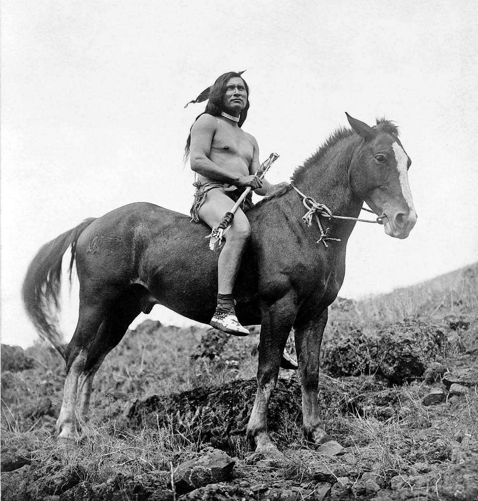 Bojovník kmene Propíchnutých nosů, šlechtitelů a chovatelů koně Appaloosa.