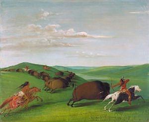 Lov bizonů z koňského hřbetu. George Catlin.