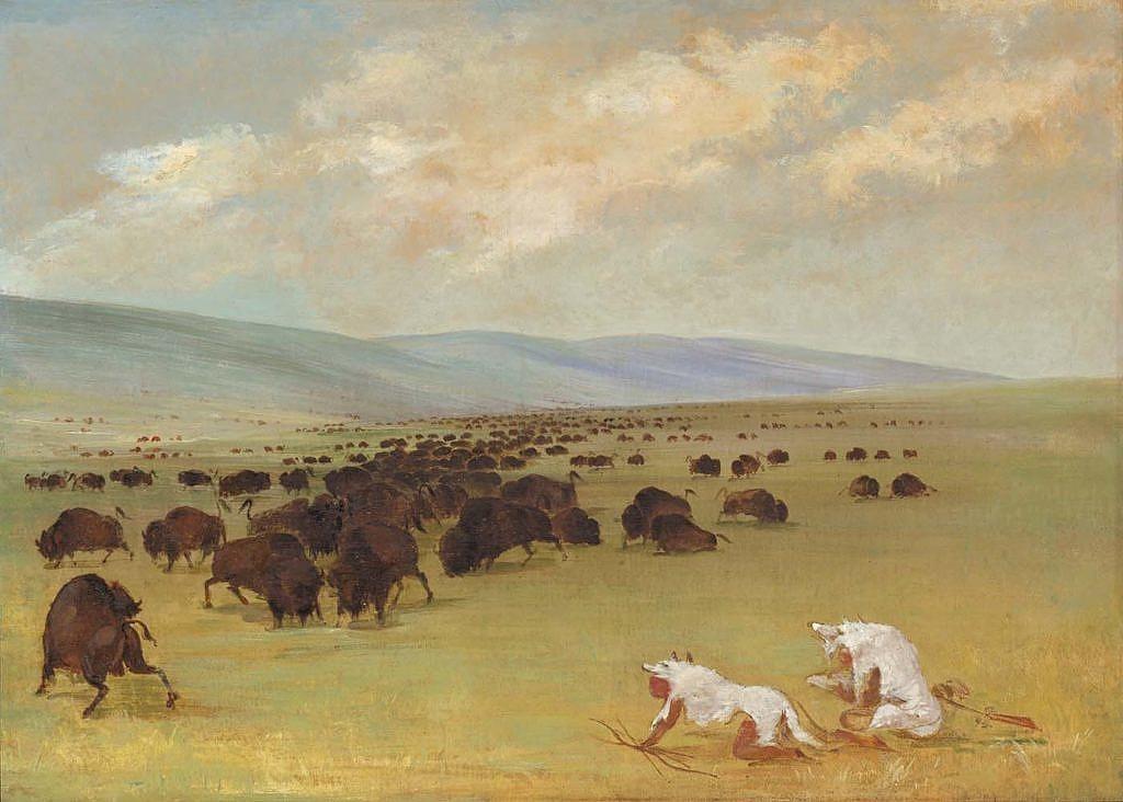Indiáni loví bizony v převlečení za vlky. Kresba George Catlin.