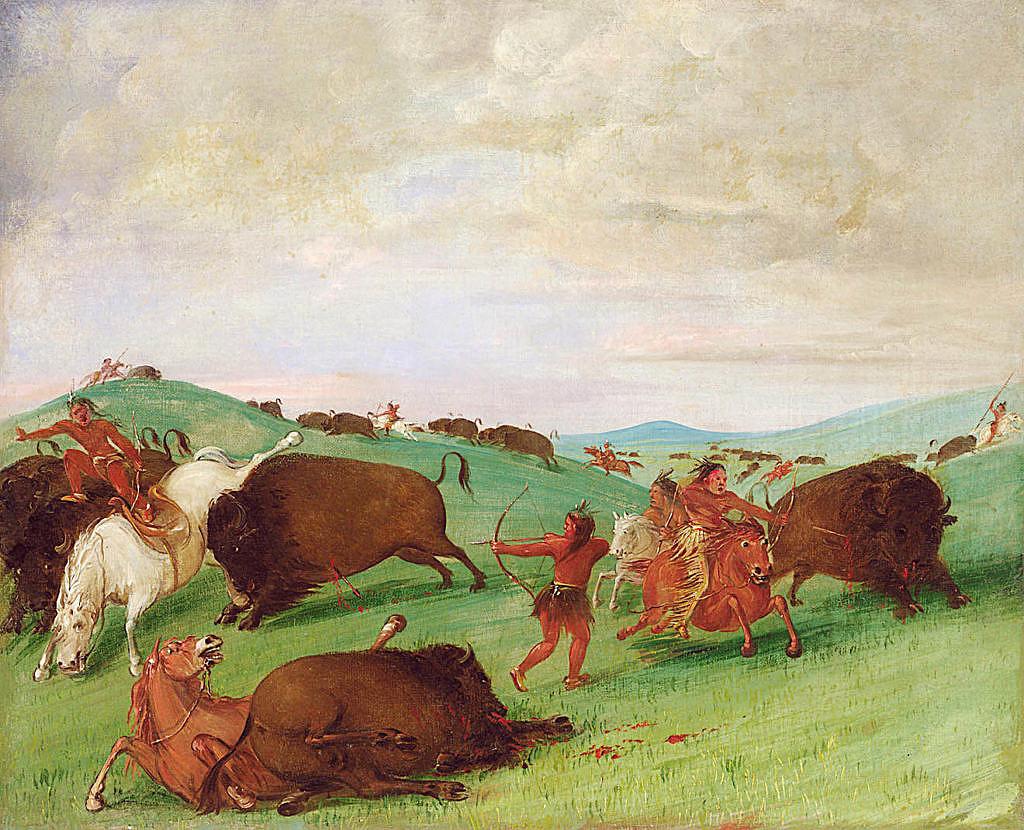 Indiánský lov bizonů z koňského hřbetu. Bez koní byl lov mnohem obtížnější. Malba George Catlin.