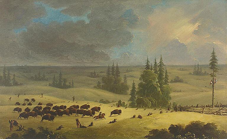 Obraz indiánského lovu bizonů do ohrady od Paula Kanea je jedním z mála dobových obrazů, který dokumentuje tento způsob lovu. Obraz pochází z roku 1864. Všimněte si centrálního stromu uprostřed ohrady. Ten sloužil k tomu aby bizoni běhali dokola ohrady a ne chaoticky. Bylo je totiž potom snažší pobít. Indiáni se vždy snažili pobít zvířata do posledního kusu.