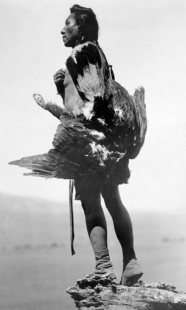 Lovec orlů s uloveným skalním orlem - Hidatsa. Fotografie Edward Curtis.