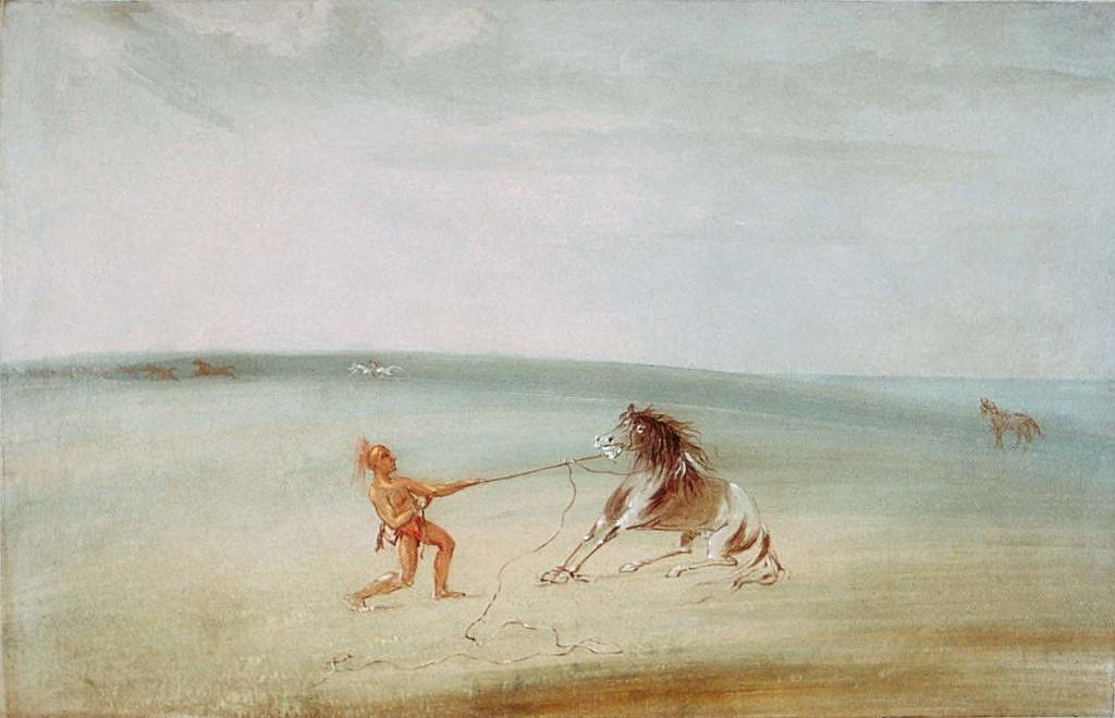 Odchyt divokých koní na jižních pláních. G.Catlin.
