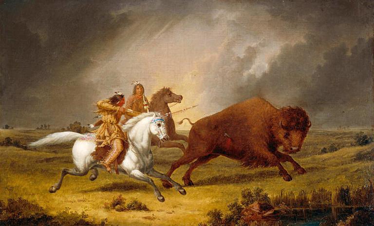 Lov bizonů kmene Assiniboinů namaloval Paul Kane v roce 1846.