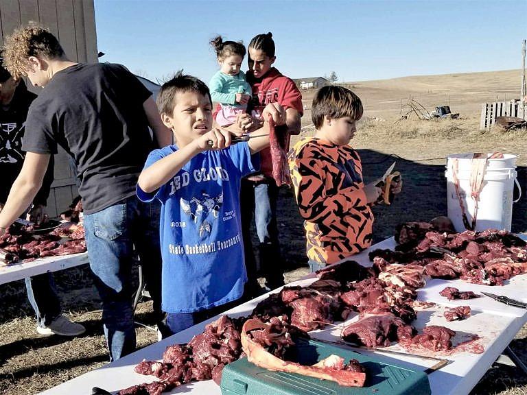 Zpracování bizona dnešními indiány.