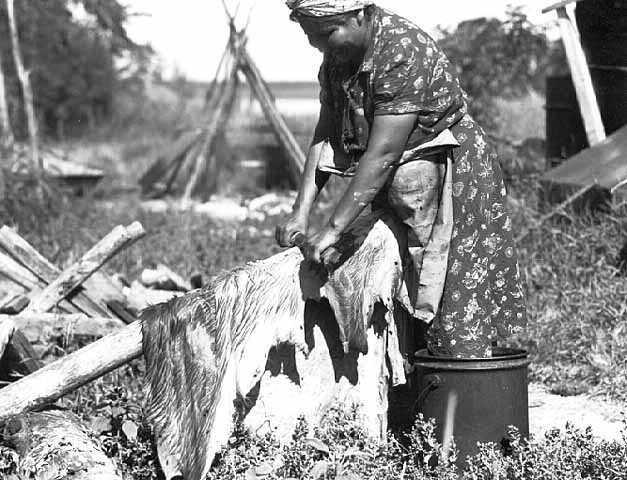 Indiánská žena kmene Odžibvejů škrábe srst kůže mokrou metodou na trámku.