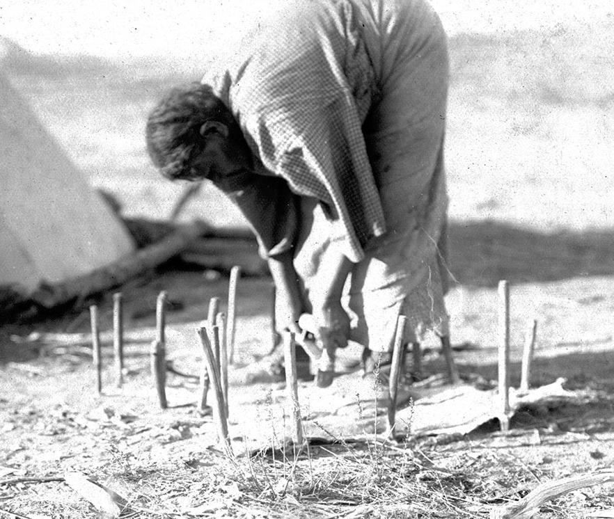 Žena z kmene Severních šajenů škrábe suchou a tvrdou kůži přikolíkovanou k zemi. Používá ostrý skrejpr.