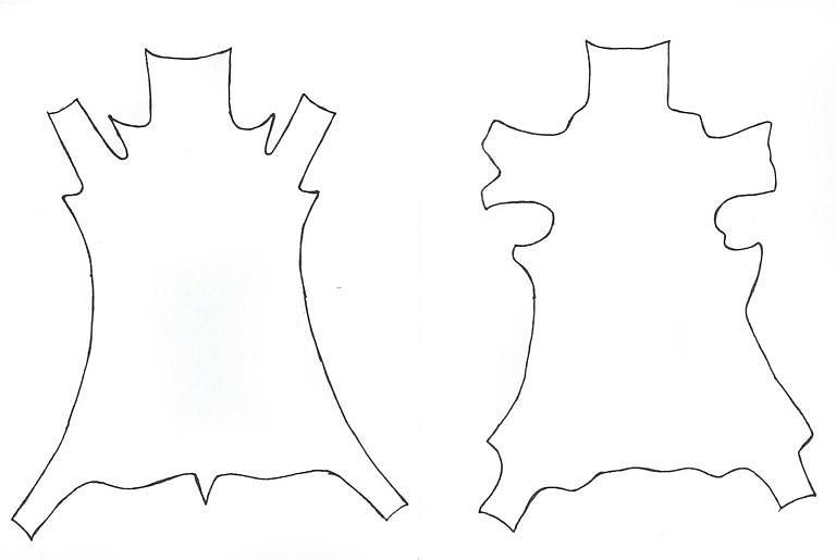 Na obrázku vlevo je kůže stažená indiánským způsobem, vpravo kůže stažená běžným postupem.