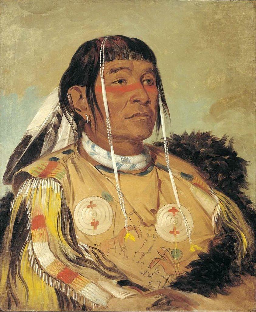 Šest-náčelník Odžibwejů z plání (v odžibwejštině Šakópe). Ve vlasech má ozdobu z mušlových kostic. Stejným způsobem se tato ozdoba používala i před tisíci let.
