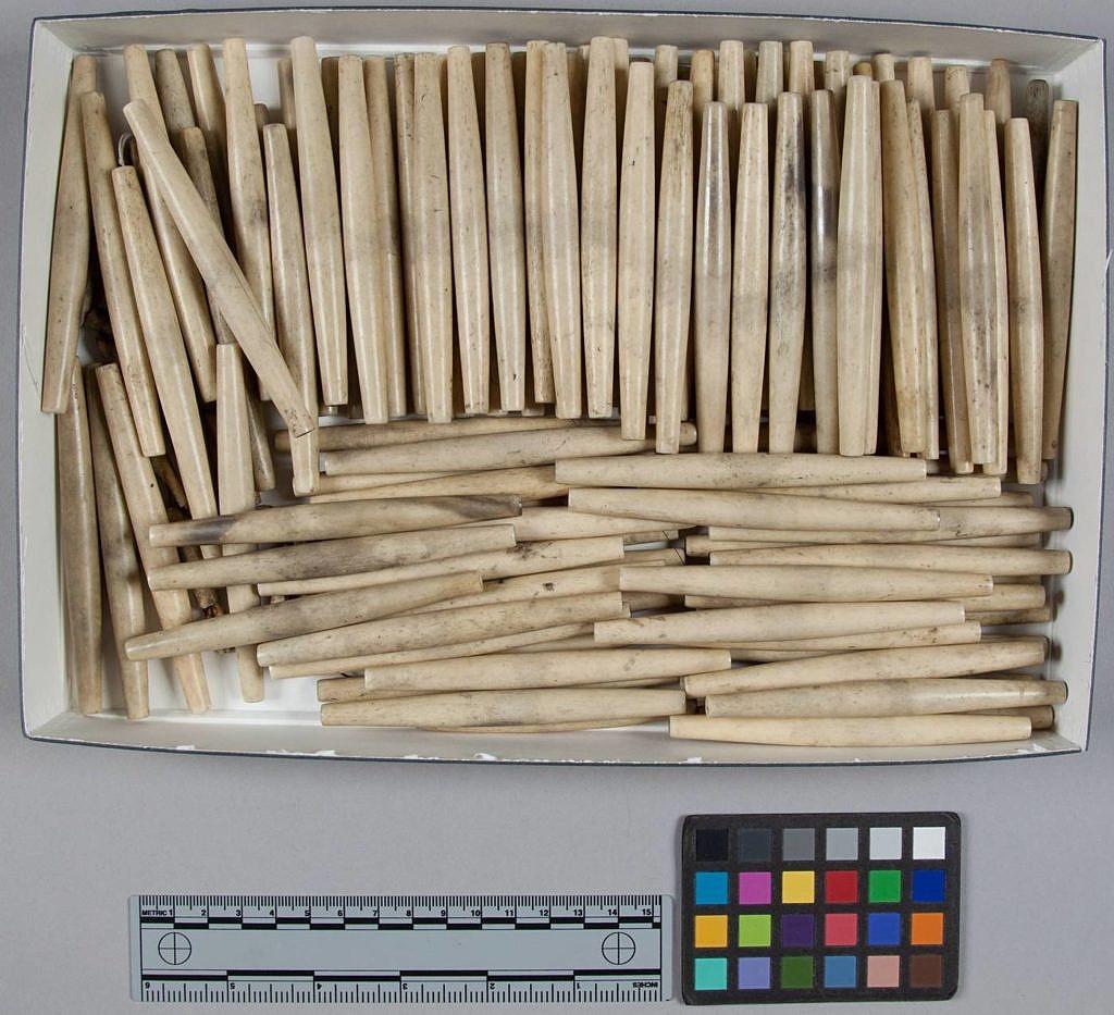 Hromada kostěných kostic. NMNH
