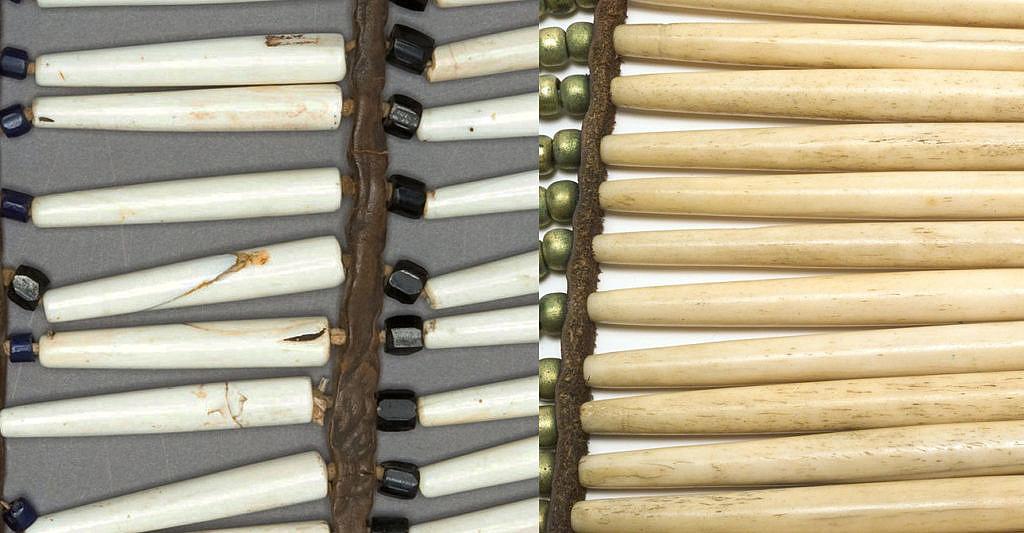 Porovnání struktury a barvy mušlových kostic (vlevo) a kostěných (vpravo). Rozdíl je viditelný ve struktuře i barvě.