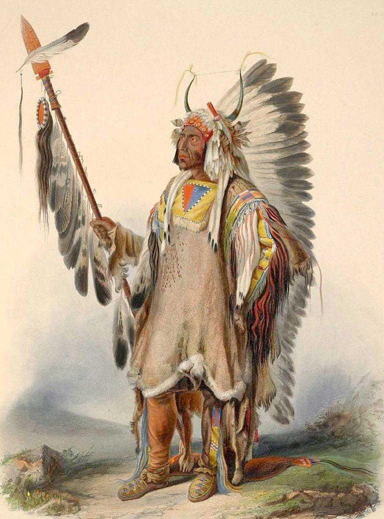 Náčelník Mandanů Čtyři medvědi (Mato tope) Na sobě má oblečenou válečnou halenu z kůží ovce tlustorohé s typickým spodním okrajem s proužkem světlé srsti a z intaktním ocasem. Malba Karl Bodmer.