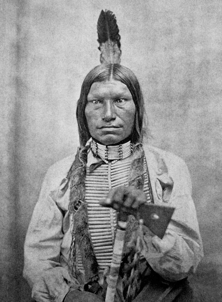 Nízký pes, Lakotský válečník, který bojoval v bitvě u Little Bighornu. Kolem krku má nákrčník vyrobený z kelnatek. V šedesátých, sedmdesátých a osmdesátých letech 19. století byly takové nákrčníky pro Lakoty, Šajeny a Arapahy velmi typické.
