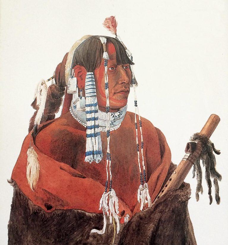 Bojovník z kmene Hidatsů na malbě Karla Bodmera. Ve vlasech má dva motýlky s dlouhými závěsy vyrobenými z kelnatek.