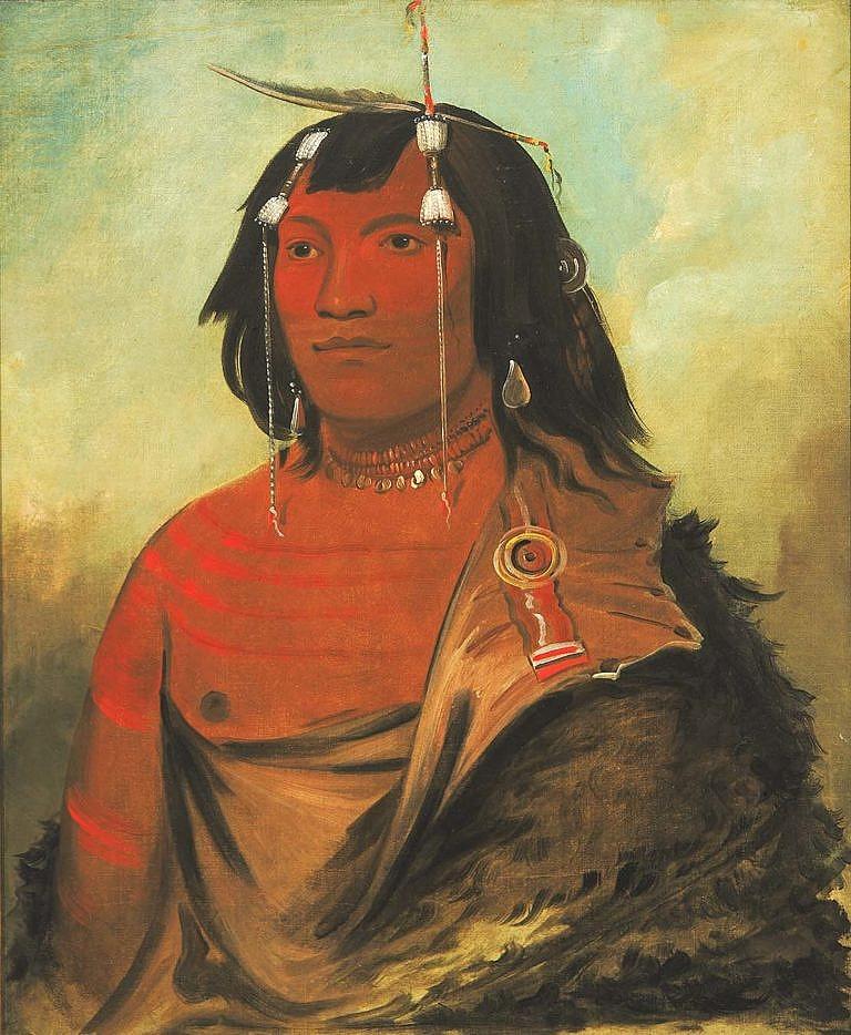 Mladý válečník kmene Vran na obraze George Catlina. Ve vlasech má typické motýlky.