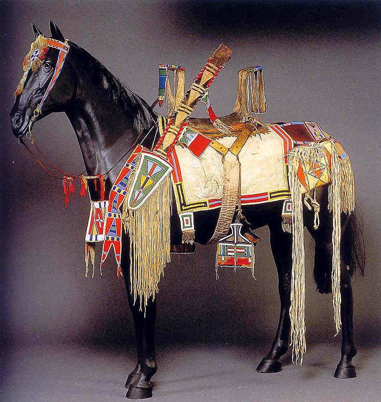 Kůň kmene Vran, plně ozdobený na přehlídku. Podsedlová deka je ozdobená celá kolem dokola.
