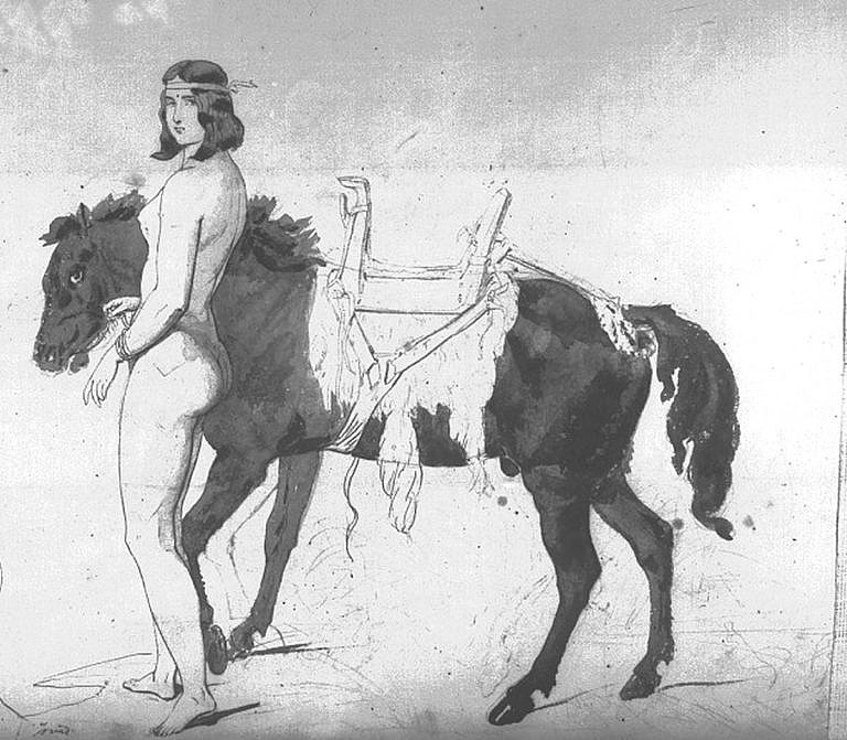 Skica malíře Friedricha Kurze z 50. let 19. století vyobrazuje indiánku s osedlaným koněm (ženské dřevěné sedlo). Sedlo je vypodloženo podsedlovou dekou z bizoní kožešiny.