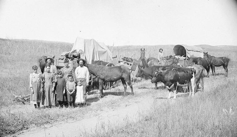 Karavana imigrantů s krytými vozy a dobytkem míří na západ hledat nové živobytí.