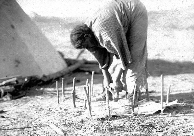 Indiánka kmene Černonožců škrábe kůži ostrým skrejprem na dobové fotografii.