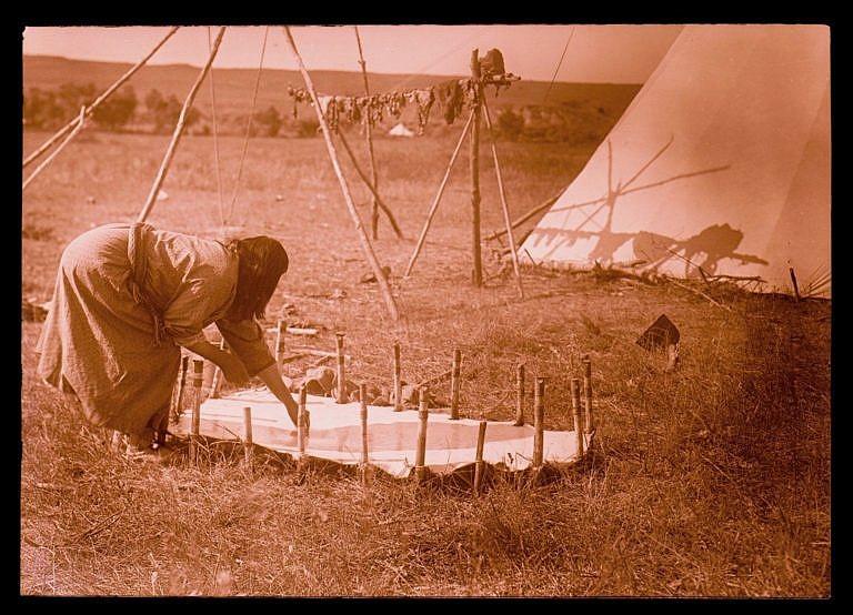 Žena kmene Vran na dobové fotografii R.Throssela. Kůži si vyřízla na takovou velikost, aby přesně odpovídala zamýšlenému výrobku v tomto případě zřejmě obálce-parfleši. Kůži přikolíkovala k zemi dlouhými kolíky.