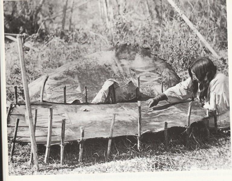 Žena kmene Vran na dobové fotografii maluje parfleš. Surová kůže je vypnutá na kolících a je stále vlhká.
