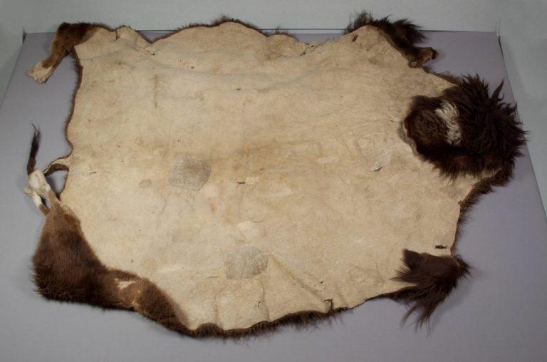 Obyčejný nezdobený bizoní plášť. Takový byl často předmětem směny a obchodu. Indiánky je vyráběly po stovkách a tisících a směňovaly je za jiné produkty. Tento plášť není první jakosti, protože obsahuje záplaty a zašité díry.